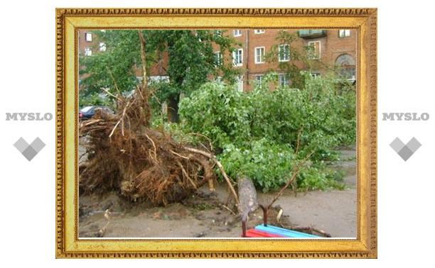 Губернатор приехал ознакомиться с последствиями урагана в Алексине