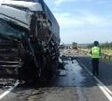 Под Тулой столкнулись два грузовика