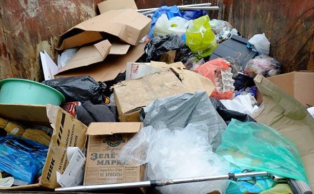 В поселке под Тулой в мусоре найдено тело новорожденного ребенка