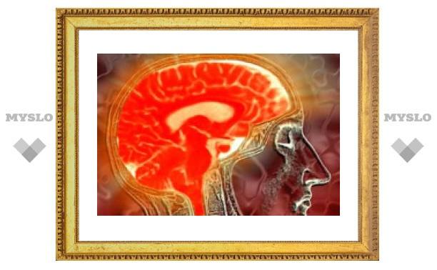 Физические упражнения улучшают работу мозга