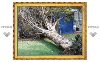 Тула переживает последствия урагана