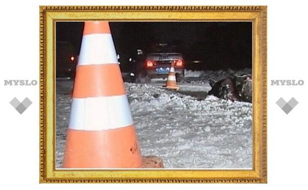Житель Одоева Тульской области «не заметил», как сбил человека