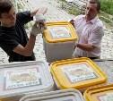 Российские военные передали сирийским детям тульский мёд