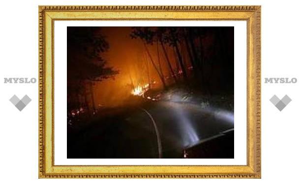 Десять американских штатов пострадали от пожаров