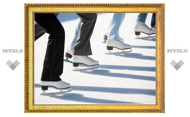Открытие ледового дворца в Новомосковске откладывается