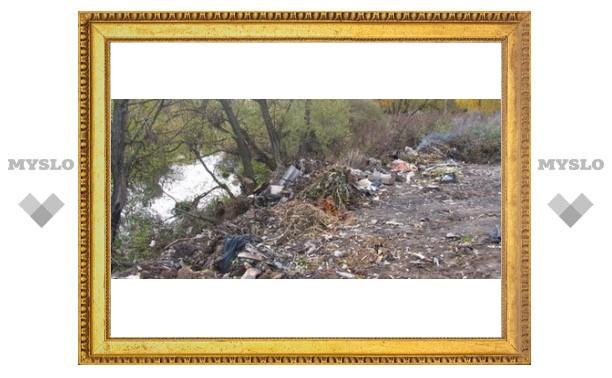 Кто загрязняет реку Тулицу?