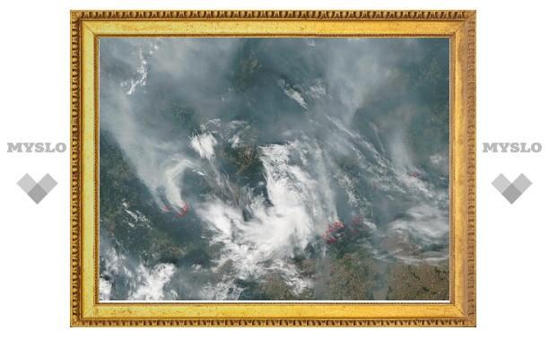Дым российских пожаров поднялся на 12 километров