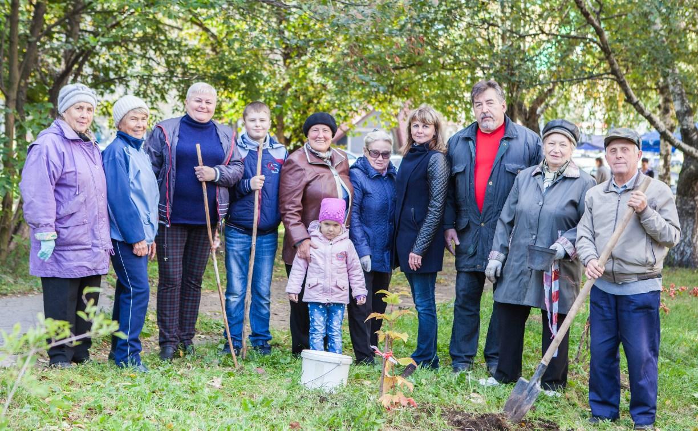 «Тульская городская УК» высадила во дворах туляков деревья