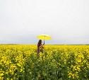 Погода в Туле на 9 июня: адская жара, возможны грозы