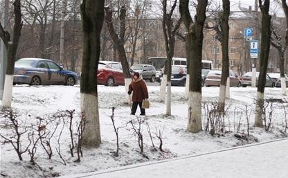 Тульские управляющие компании не справляются с уборкой снега во дворах домов