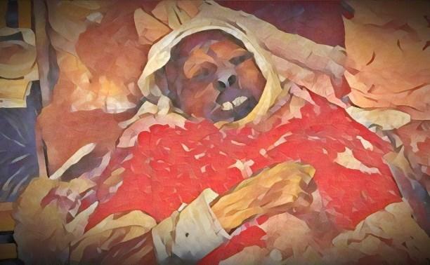 Завершены съемки социального хоррора о тульской мумии: трейлер