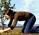 В Чернском районе Тульской области появится парк «Бежин луг XXI век»