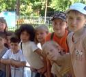 Безопасный отдых детей является первостепенной задачей правительства Тульской области