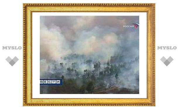 Москву заволокло дымом от пожаров под Рязанью и Владимиром