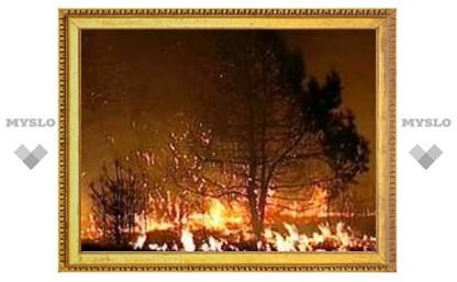 Тульская пенсионерка сгорела заживо