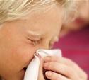 Эпидемии гриппа в регионе пока нет!