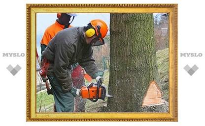 В каких дворах Тулы срубят деревья