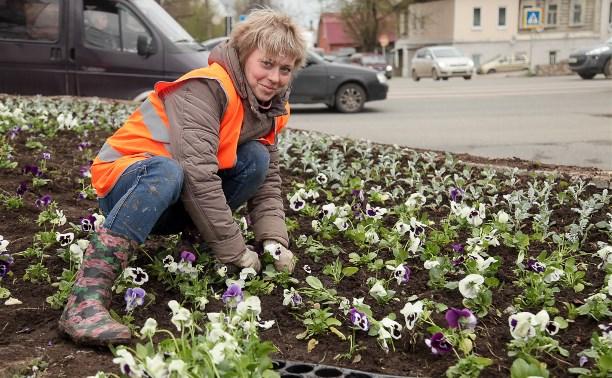 29 апреля в Туле высадили 11 тысяч цветов