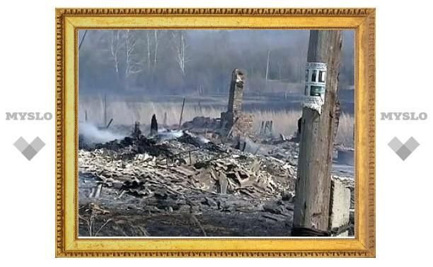 Площадь природных пожаров в России увеличилась за сутки в четыре раза
