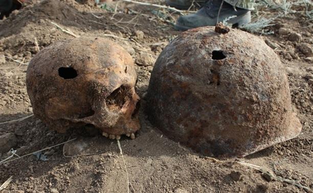 Поисковики разыскивают родственников погибшего в ВОВ ефремовца