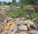 В тульском Заречье жители год добиваются ликвидации ядовитой свалки