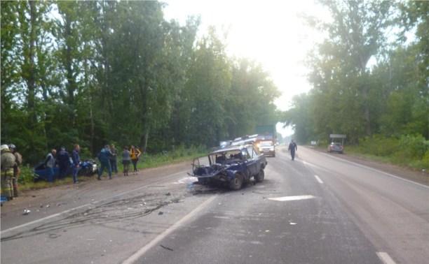 На дорогах области всего за сутки в ДТП пострадали два малыша