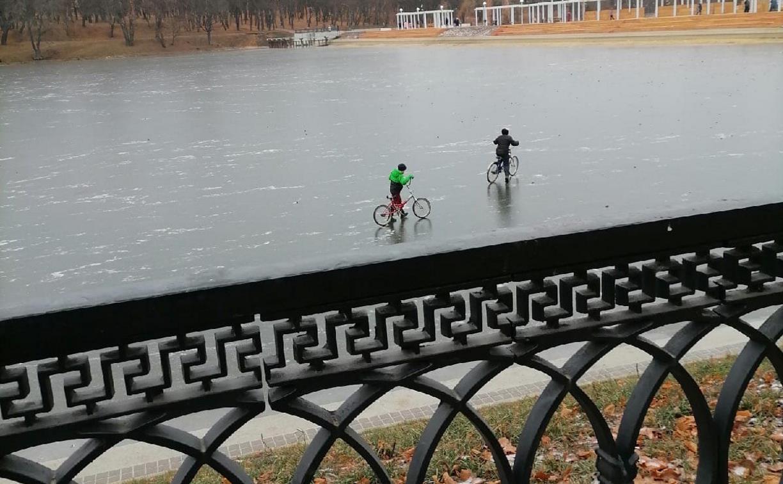 Мальчишки на льду в Богородицке: родителей привлекли к ответственности