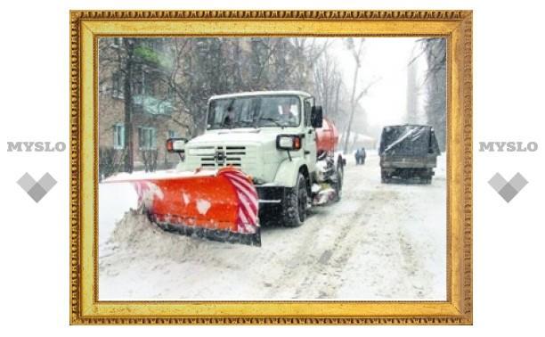 Коммунальщиков Зареченского района Тулы обязали убрать весь снег