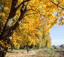 Синоптик рассказал, когда в Центральную Россию вернется тепло