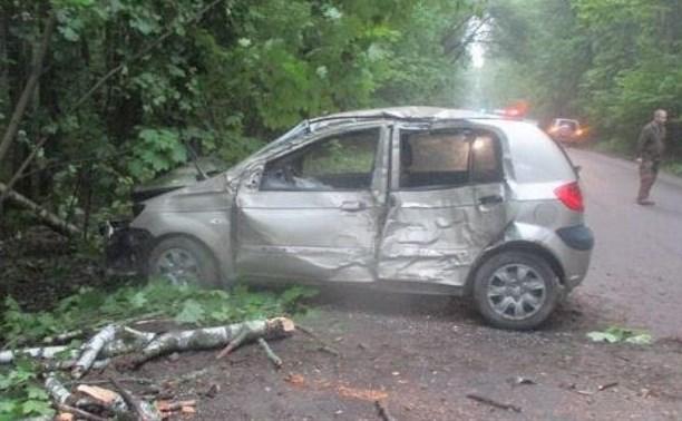 В Туле иномарка сбила лося и врезалась в дерево