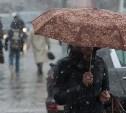 Погода в Туле 1 ноября: дождь, ветер, давление в норме