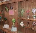 В Алексине можно посетить выставку «деревьев счастья»