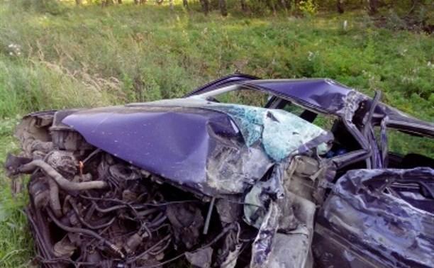 В Ясногорском районе произошло смертельное ДТП