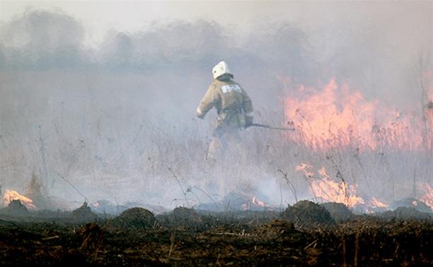 Из-за поджогов травы уже погибли несколько туляков