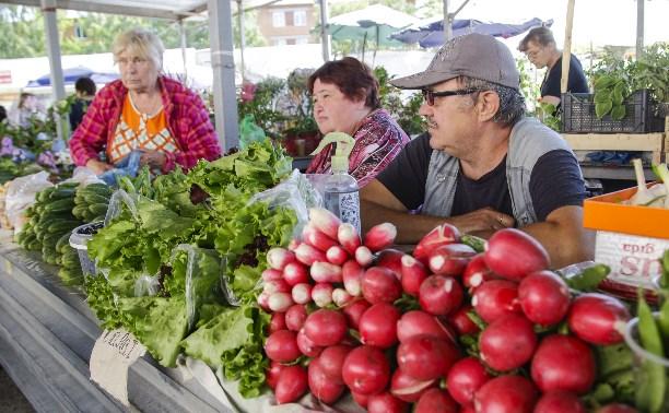 Дождливое лето: Ждать ли тулякам урожая?