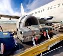 Совет Федерации дал добро на платный провоз багажа в самолетах
