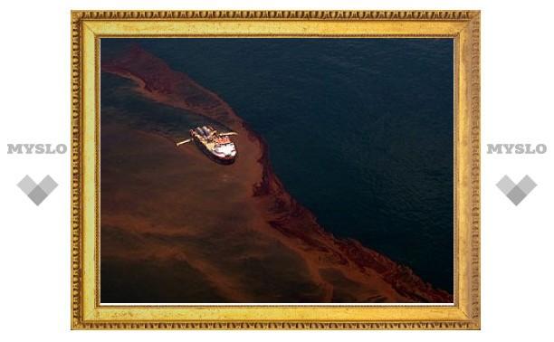 Утечку нефти в Мексиканском заливе недооценили в 12 раз
