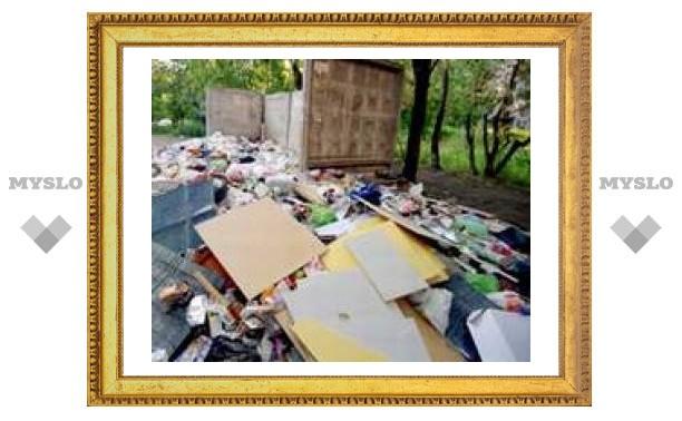 Коммунальщики Тулы не убирают помойки