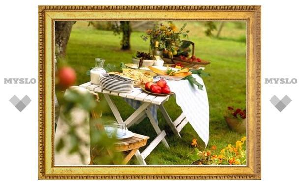 В Туле пройдёт неформальный творческий пикник