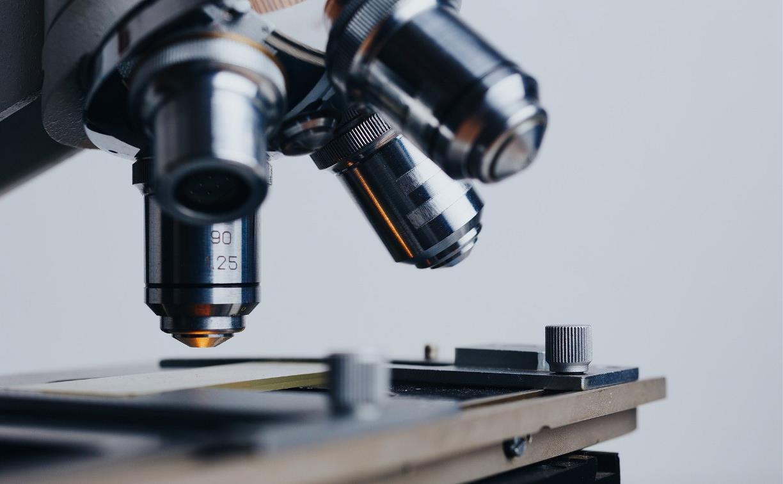 Новые лекарства, всемирное потепление и новые галактики: научные открытия-2020
