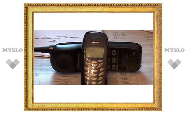 Под Тулой безработные воруют телефоны