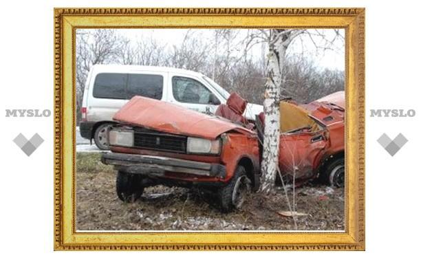 Под Тулой автомобиль с семьей врезался в дерево