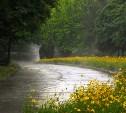 Погода в Туле на выходные: дождь с грозой и переменная облачность