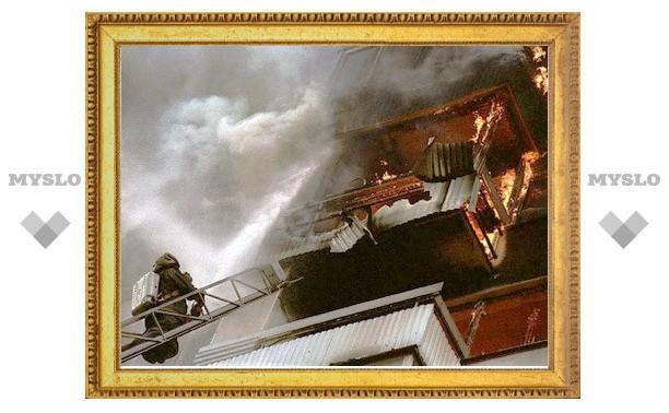 Тульские пожарные спасли ребенка
