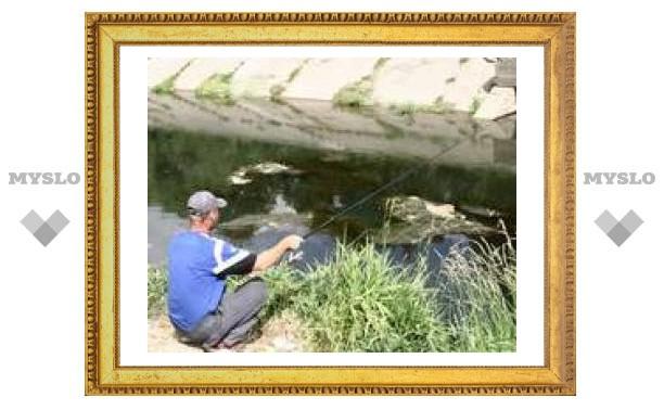 В реке Воронке под Тулой завелся карп