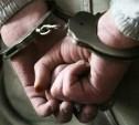 Туляк отсидит 20 лет в колонии за изнасилование и убийство пенсионерки
