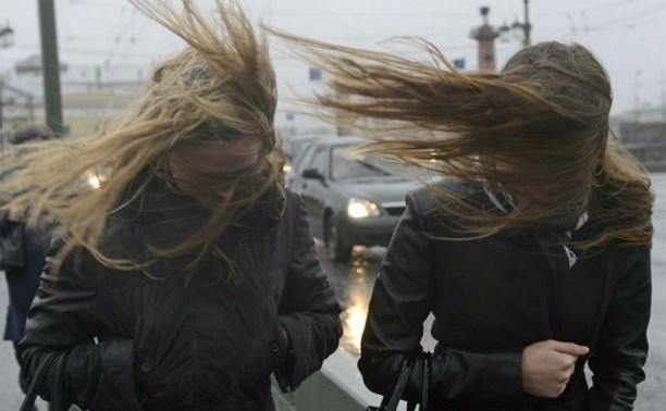 Метеопредупреждение: в Тульской области ожидается усиление ветра