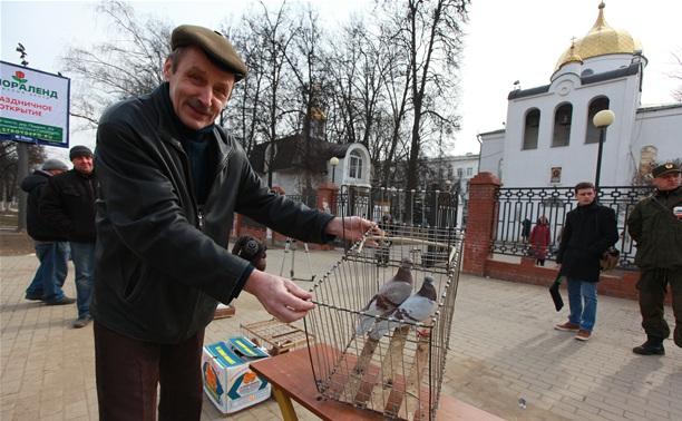 Продавцы птиц на Благовещение: «Нам нечего кушать!»