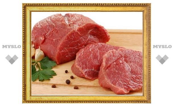 В Тульской области мужчину осудили за кражу куска мяса из холодильника приятеля