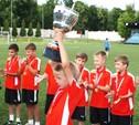 Новомосковский «Химик-2003» выиграл Кубок Черноземья
